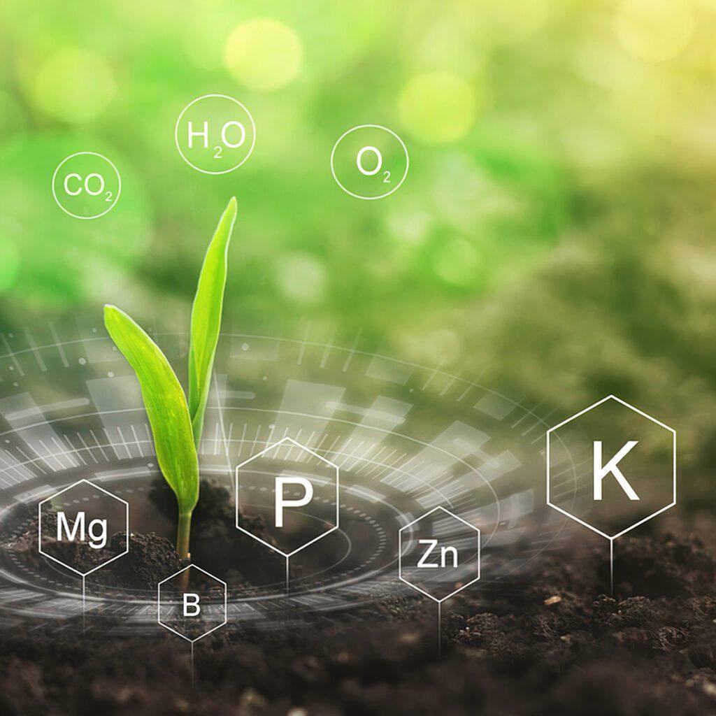 Benefícios da Microbiologia